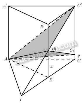 Câu 19 trang 224 Sách bài tập Hình học 11 Nâng cao